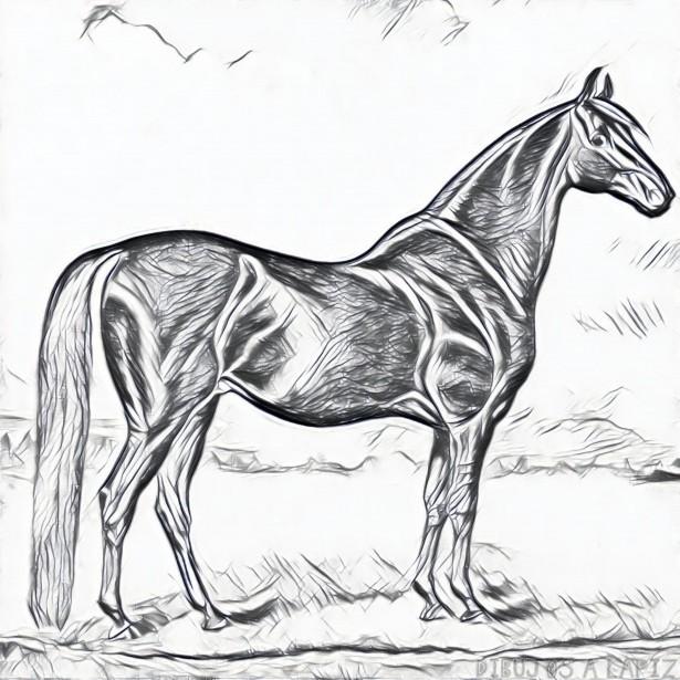 Dibujos de caballos para colorear