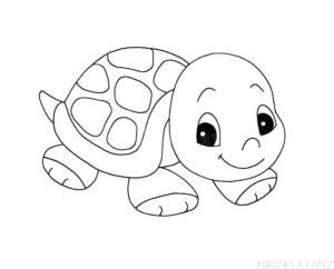 dibujos de tortugas marinas