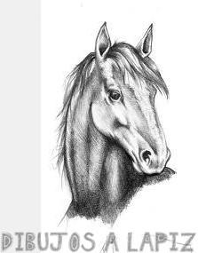imágenes para dibujar de animales