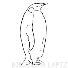 pinguino emperador dibujo