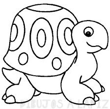 tortuga coloreada