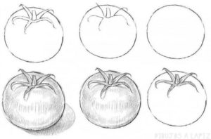 cómo dibujar un tomate