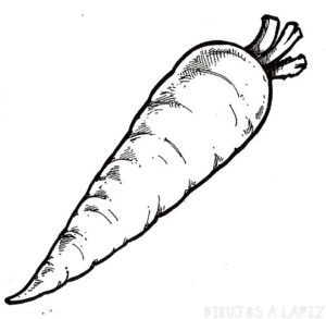 como se dibuja una zanahoria