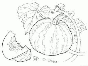 dibujos de verduras para colorear scaled