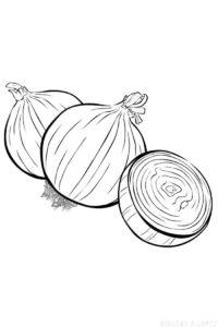 dibujos de verduras para niños scaled