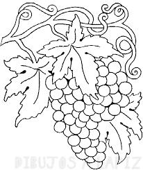 gajo de uvas