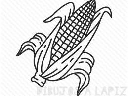 mazorca de maiz para colorear