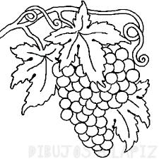 racimo de uvas para dibujar