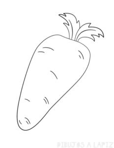 zanahoria planta