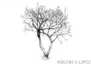 como dibujar un arbol facil