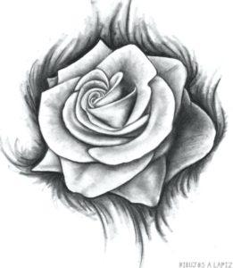 como dibujar una rosa facil