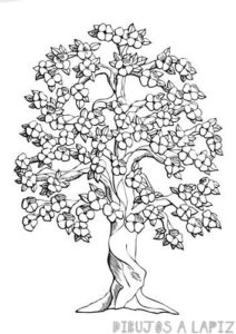 dibujos de cerezos japoneses