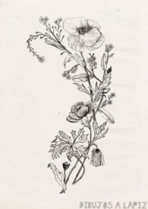 dibujos de flores a color
