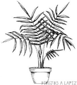 figuras de palmeras