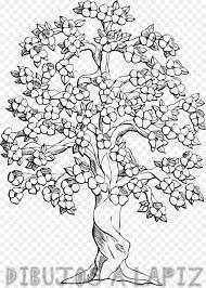 flor de cerezo japones dibujo