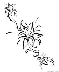 flor de lirio dibujo
