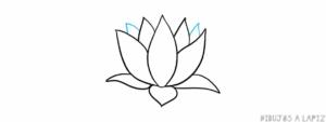 flor de loto para colorear
