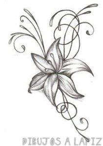 flores azucenas imagenes