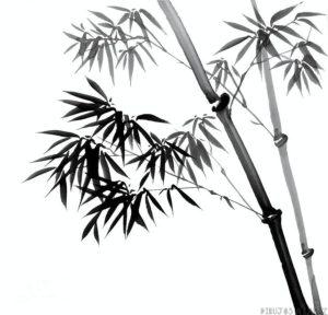 fondo de bambu