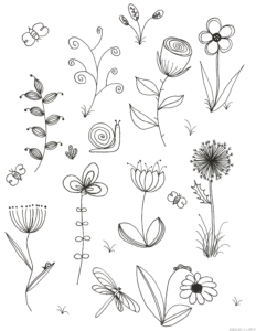 ilustracion plantas