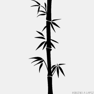 imagenes bambu japones