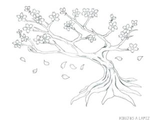 imagenes de arbol de cerezo japones