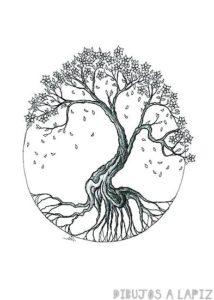 imagenes de cerezos chinos