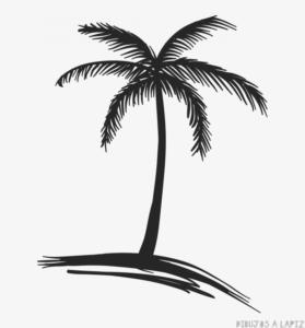 imagenes de paisajes con palmeras