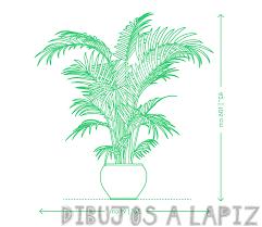 imagenes sobre las plantas