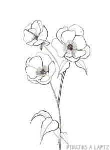 pintura al oleo flores amapolas
