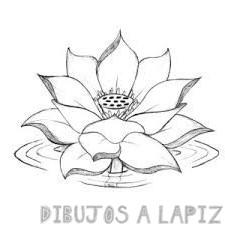 simbolo flor de loto