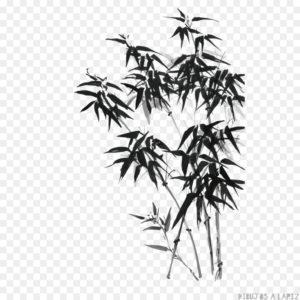 vinilos de bambu